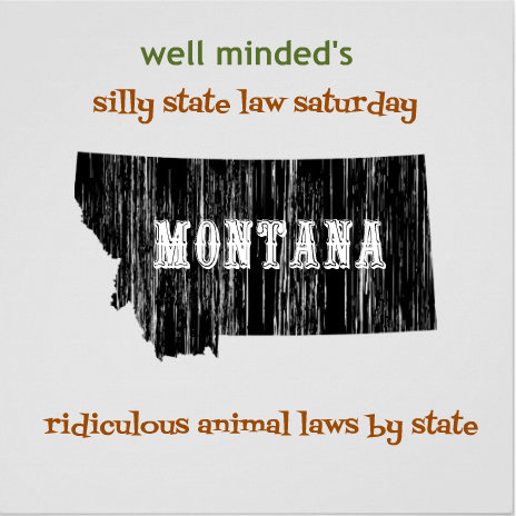 well minded's silly state law saturday (ridiculous animal laws by state): montana  state image source: zazzle.com