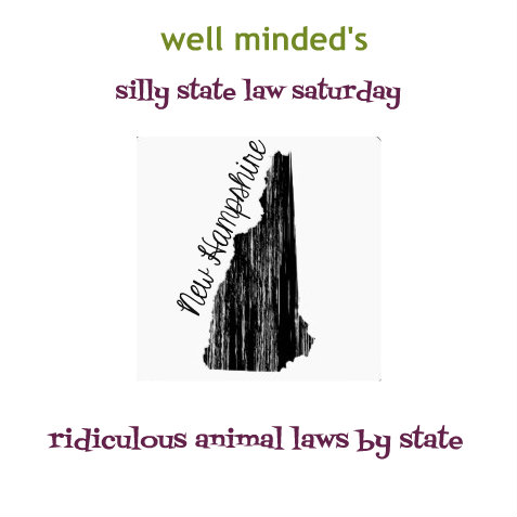 silly state law saturday: new hampshire    state image source: zazzle.com