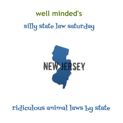 silly state law saturday: new jersey   state image source: educationonline.com