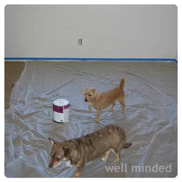Everyone can help paint the nursery!
