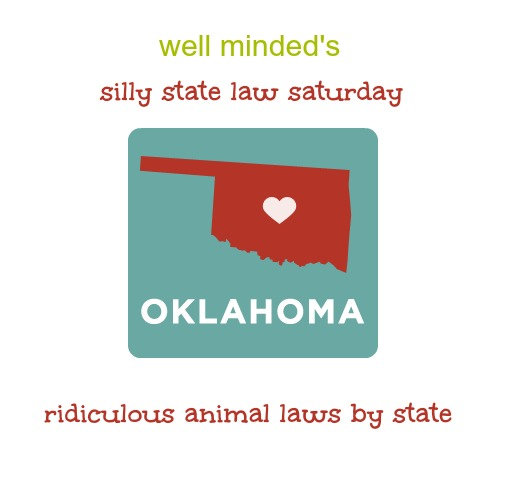 silly state law saturday: oklahoma. oklahoma image source: freedomtomarry.org