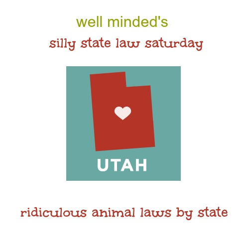 well minded's silly state law saturday: utah. state image source: freedomtomarry.org