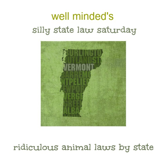 well minded's silly state law saturday: vermont. state photo source: zazzle.com