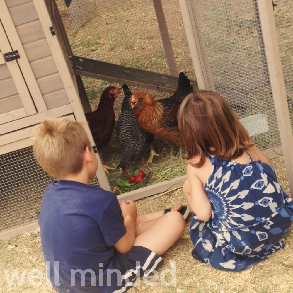 My junior pet sitters love to help me care for chickens.