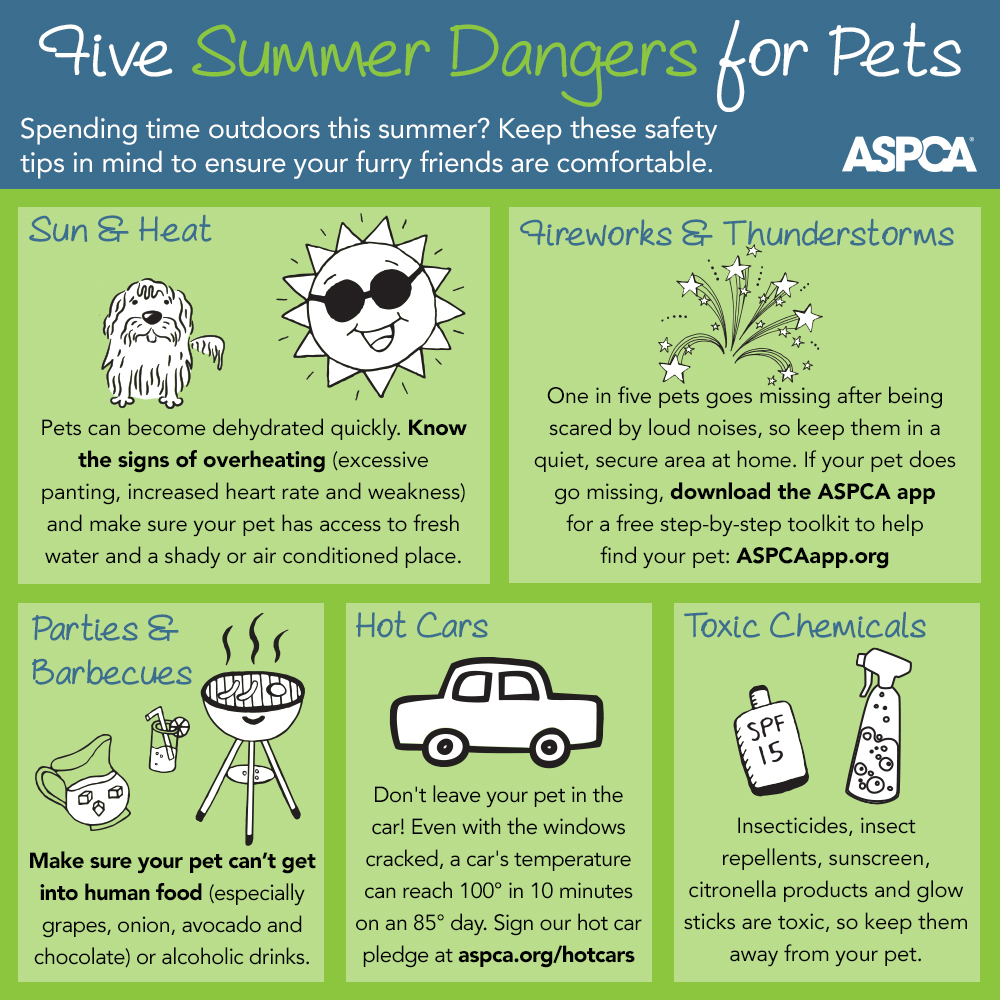 The ASPCA reminds us of the top five summer hazards for pets. Please keep your pets safe this season!
