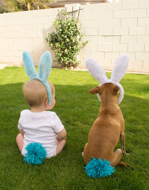 Happy Easter from some cute buns.