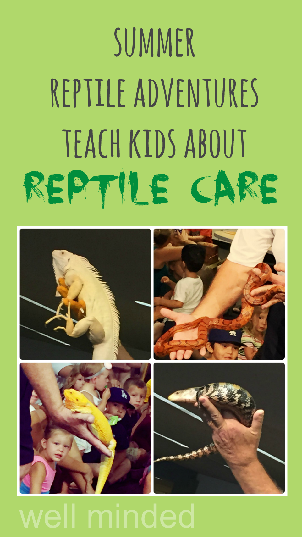 Summer reptile adventures teach kids about #ReptileCare.