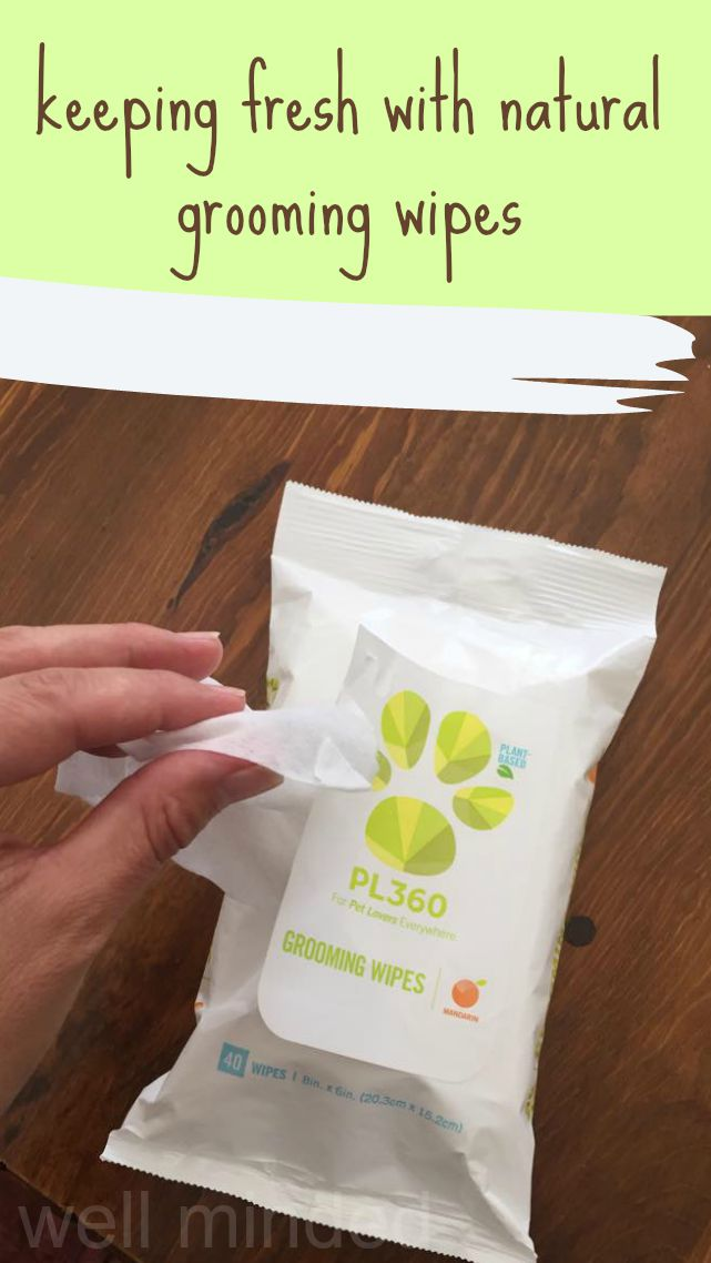 staying fresh with natural grooming wipes from PL360.