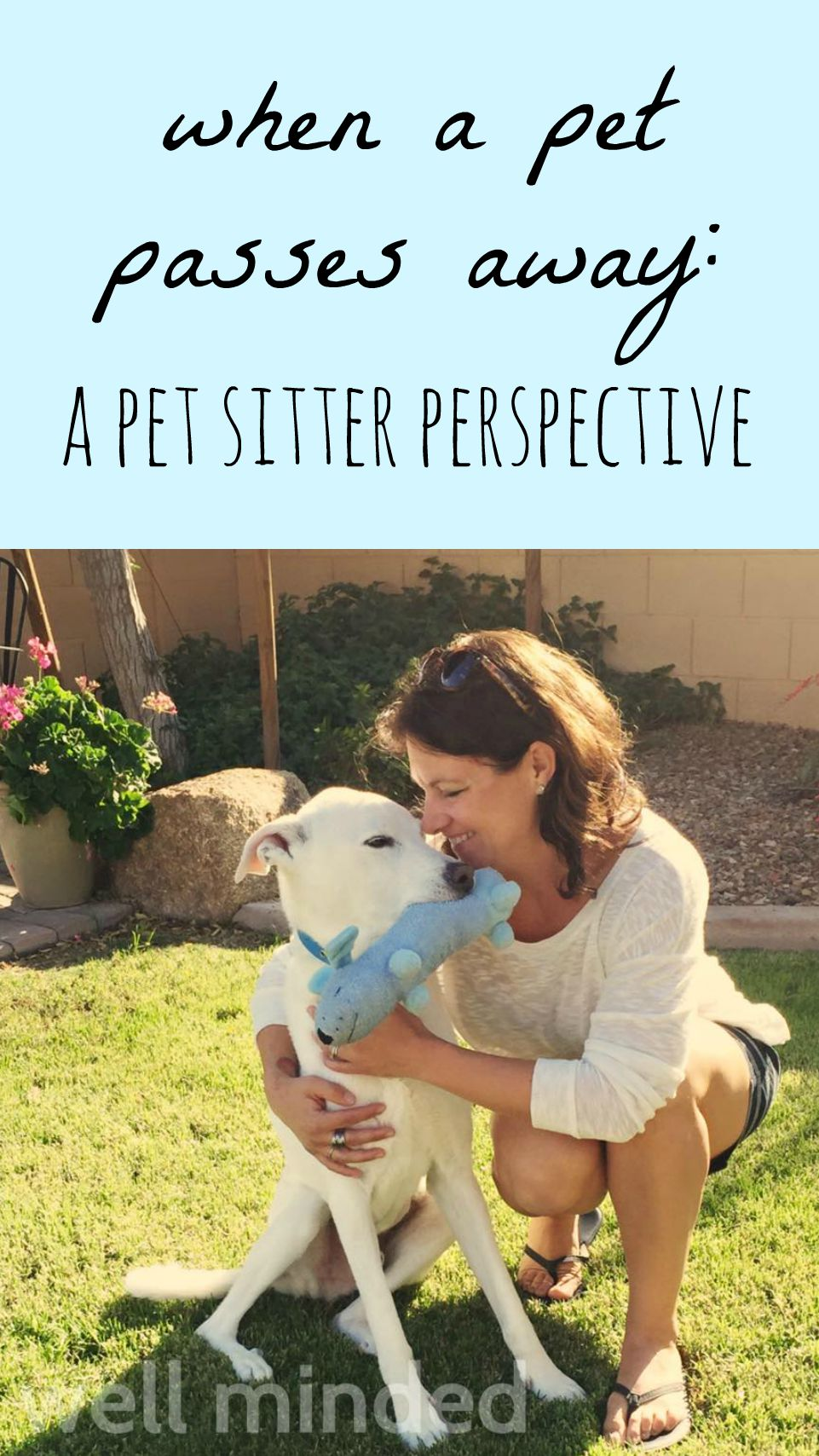 When a Pet Passes Away: A Pet Sitter Perspective