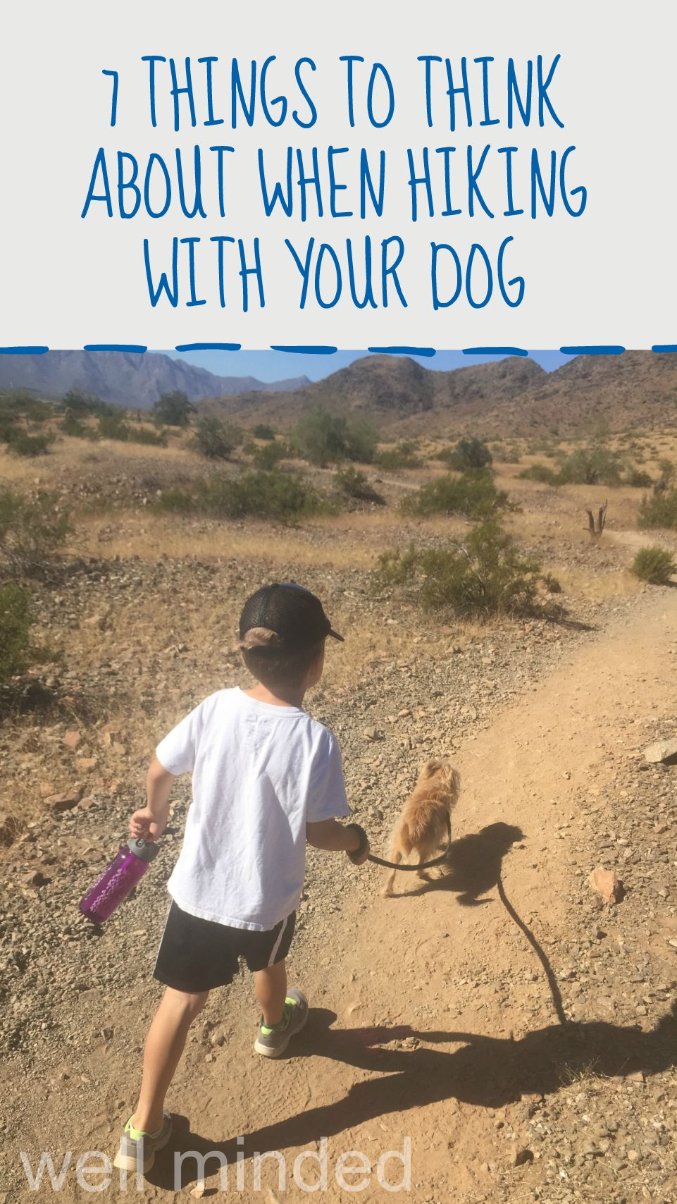 7 Things to Think About When Hiking With Your Dog