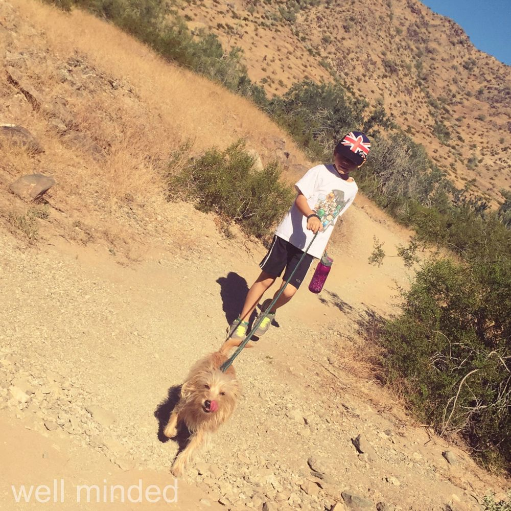 Always keep your pet leashed when hiking.