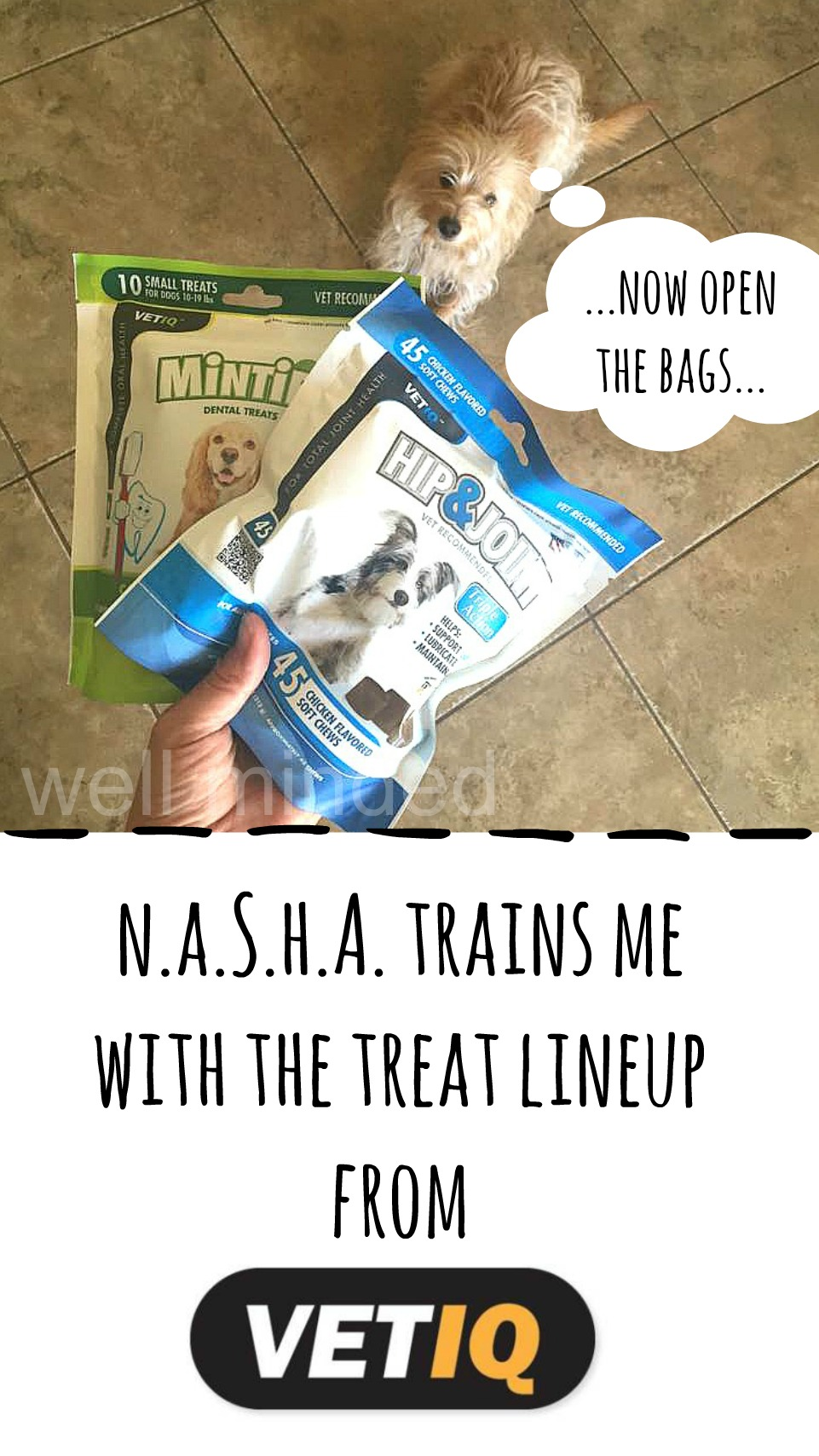 N.A.S.H.A. Trains Me with the Treat Lineup from VetIQ. wellmindedpets.com