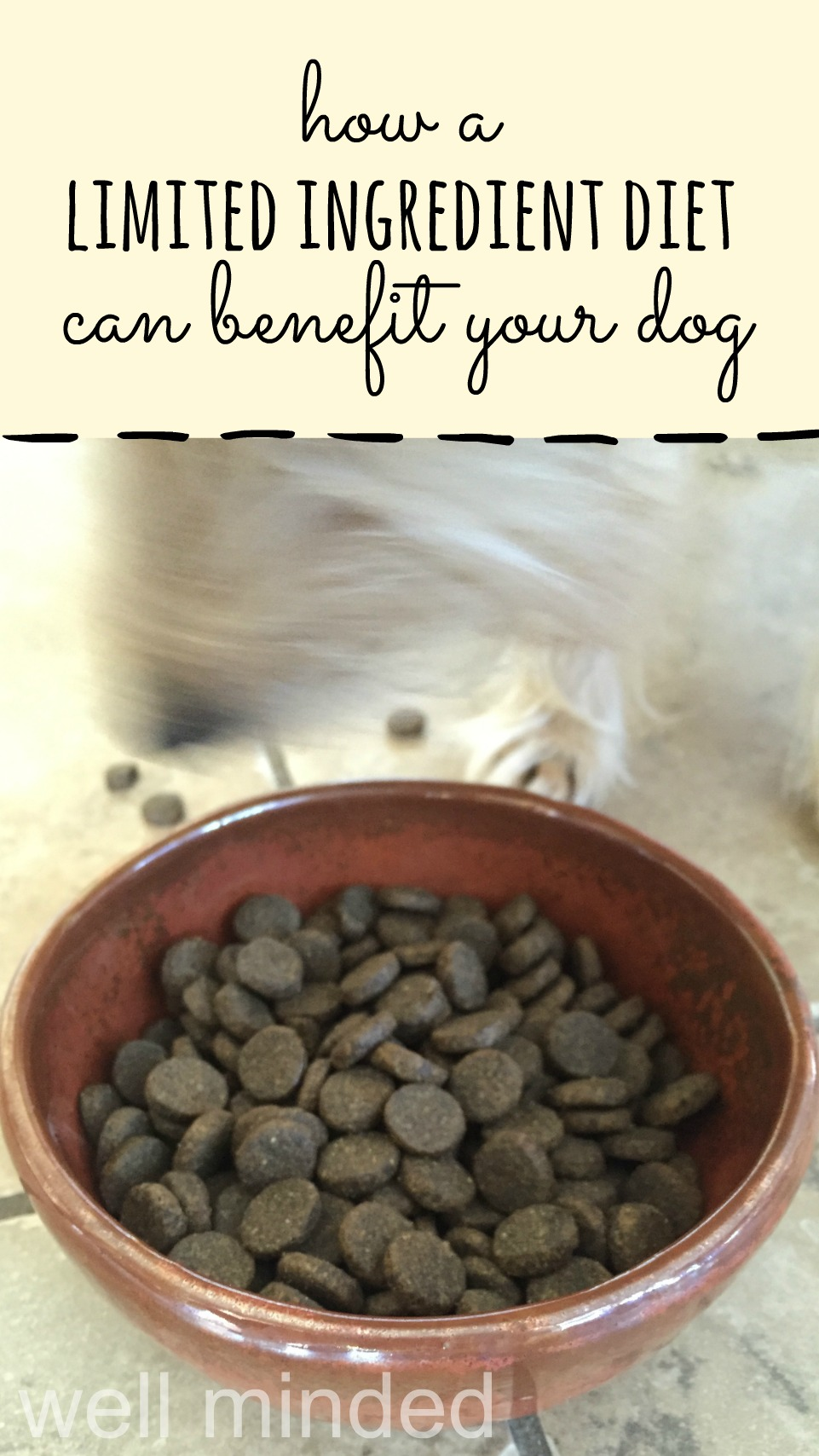How a Limited Ingredient Diet Can Benefit Your Dog–wellmindedpets.com