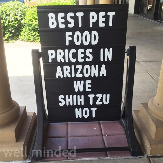 Popped by one of our favorite pet stores today! 😂 @petplanetahwatukee #pets #shihtzu