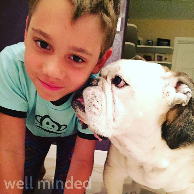Lover boys. #petsitting #dog #englishbulldog