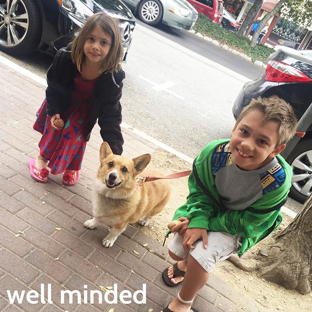 Carmel is an excellent place to get our doggie fix! #dog #corgi #vacation #carmelbythesea