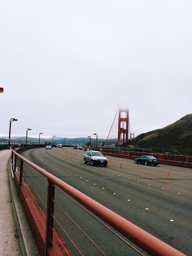golden gate bridge / jensen taylor
