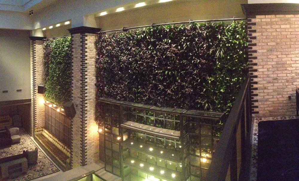 Thompson Hotel Green Wall.jpg