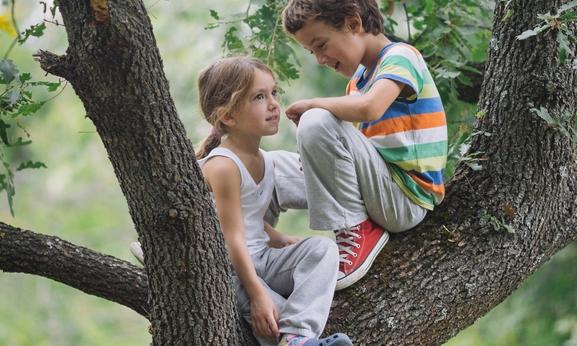 kids in a tree.jpg