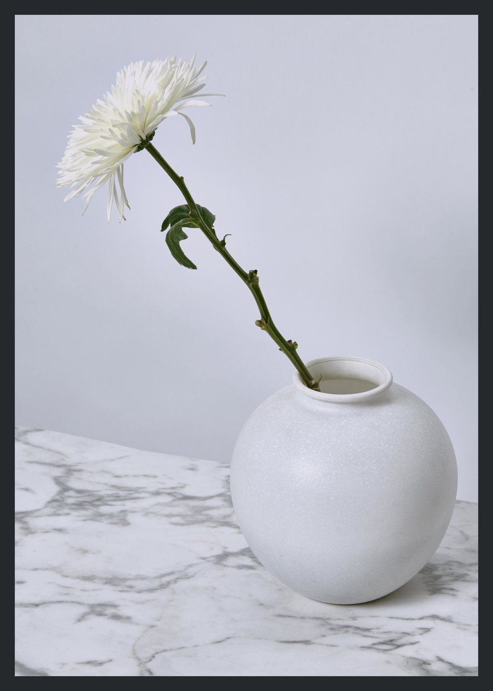 whitevase.jpg