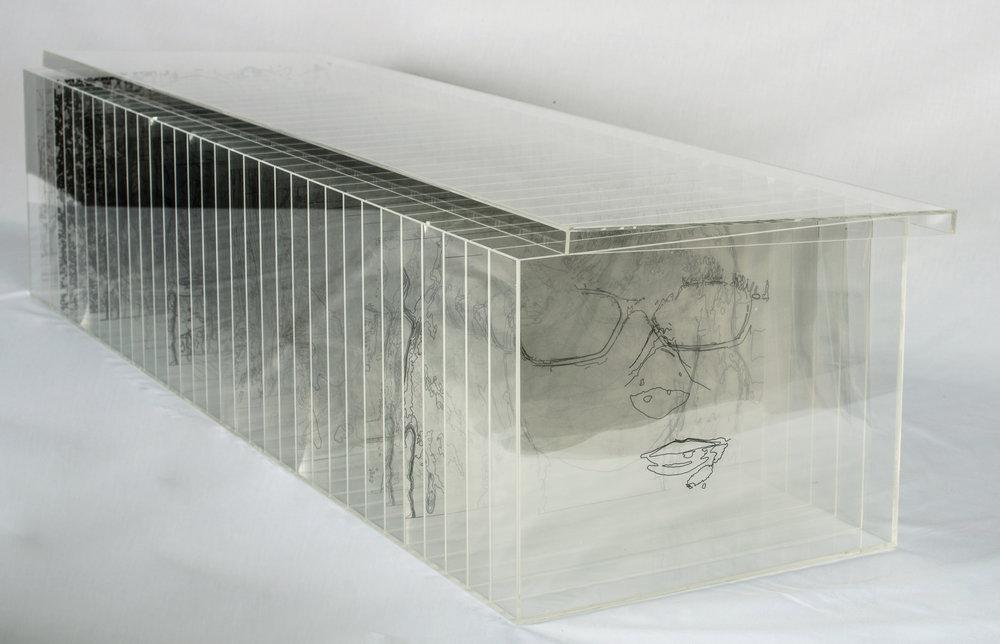 Polymer acrylic, acetate, ink, 40 x 38 cm, 2015