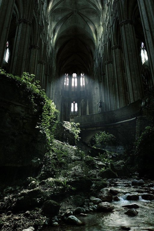 nature-and-animals-photos :     Inside an abandoned church of St. Etienne, France where nature slowly takes over.