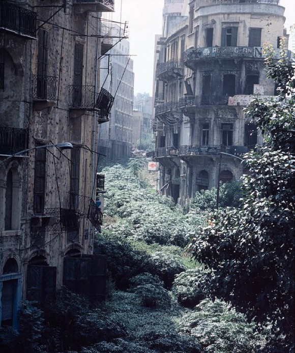 permaculture-prowess: Nature will take over sooner rather than later. The green line demarcation zone, Beirut, Lebanon, 1982. . #spirituality #sustainable #health #love #nature #travel #offthegrid #architecture #permaculture #society by off_grid_architecture https://www.instagram.com/p/-w78SXDD5u/