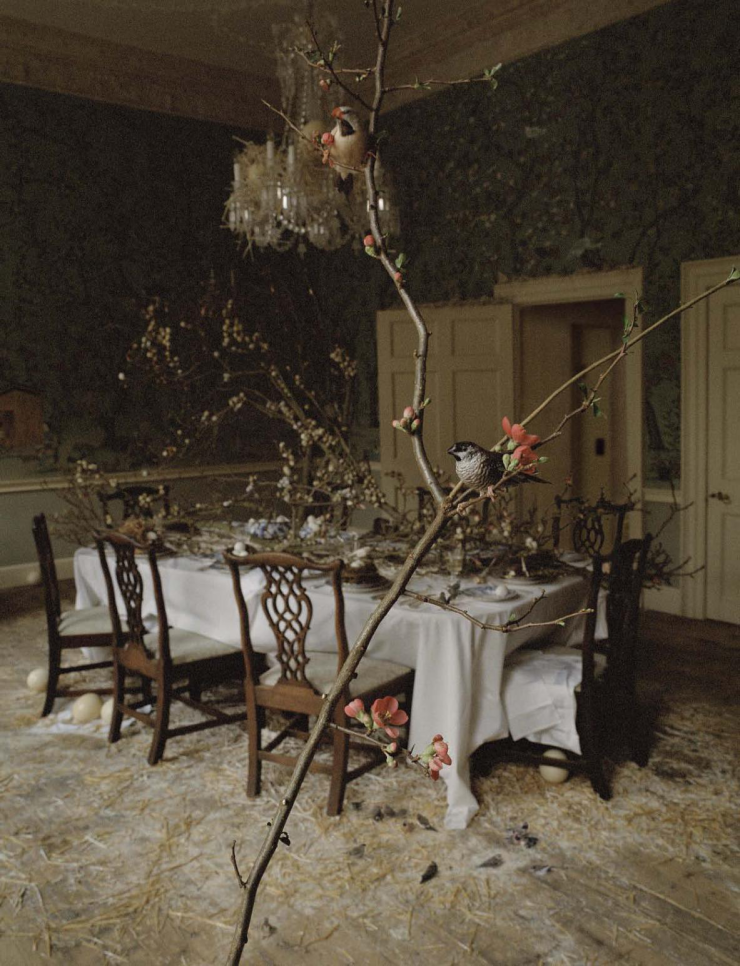 "a-world-sublime: ""Come to Dinner"" by Tim Walker for Vogue Italia May 2015"