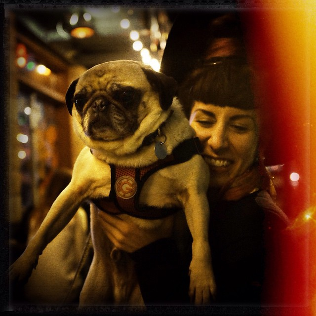 Me and my nephew, @maxwellvonsnort, from this past weekend in Philly. Photo by @joshuajanke while out to dinner with @stalecake. #pug #doggynephew #dog #dogsofintagram