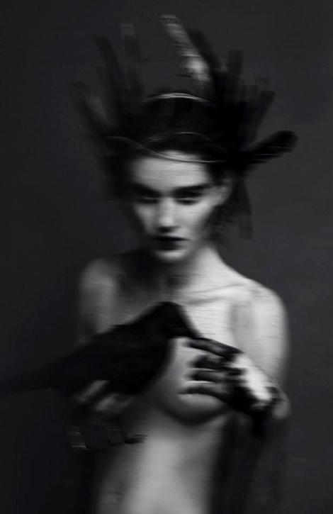 feathers-borealis :     Evelyn Bencicova