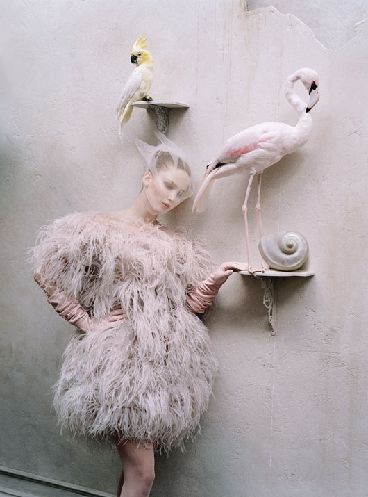delusion–angel: Jennifer Lawrence by Tim Walker for W Magazine, October 2012
