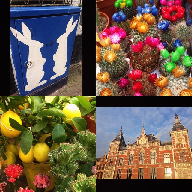 Some quick moments from today's #Amsterdam fun. #sightseeing #color #bunnies