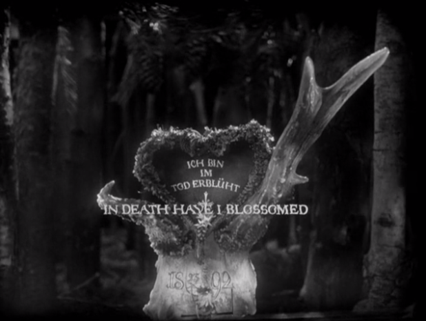 roses–and–rue: The Brothers Quay: Stille Nacht III: Tales from Vienna Woods. This is my favourite from the Stille Nacht series, in which an odd assortment of objects seem to be endlessly repeating the moment a deer is fatally shot in the testicles. Footage from this film was recycled for the trailer of Institute Benjamenta, the Quays' first live action film.