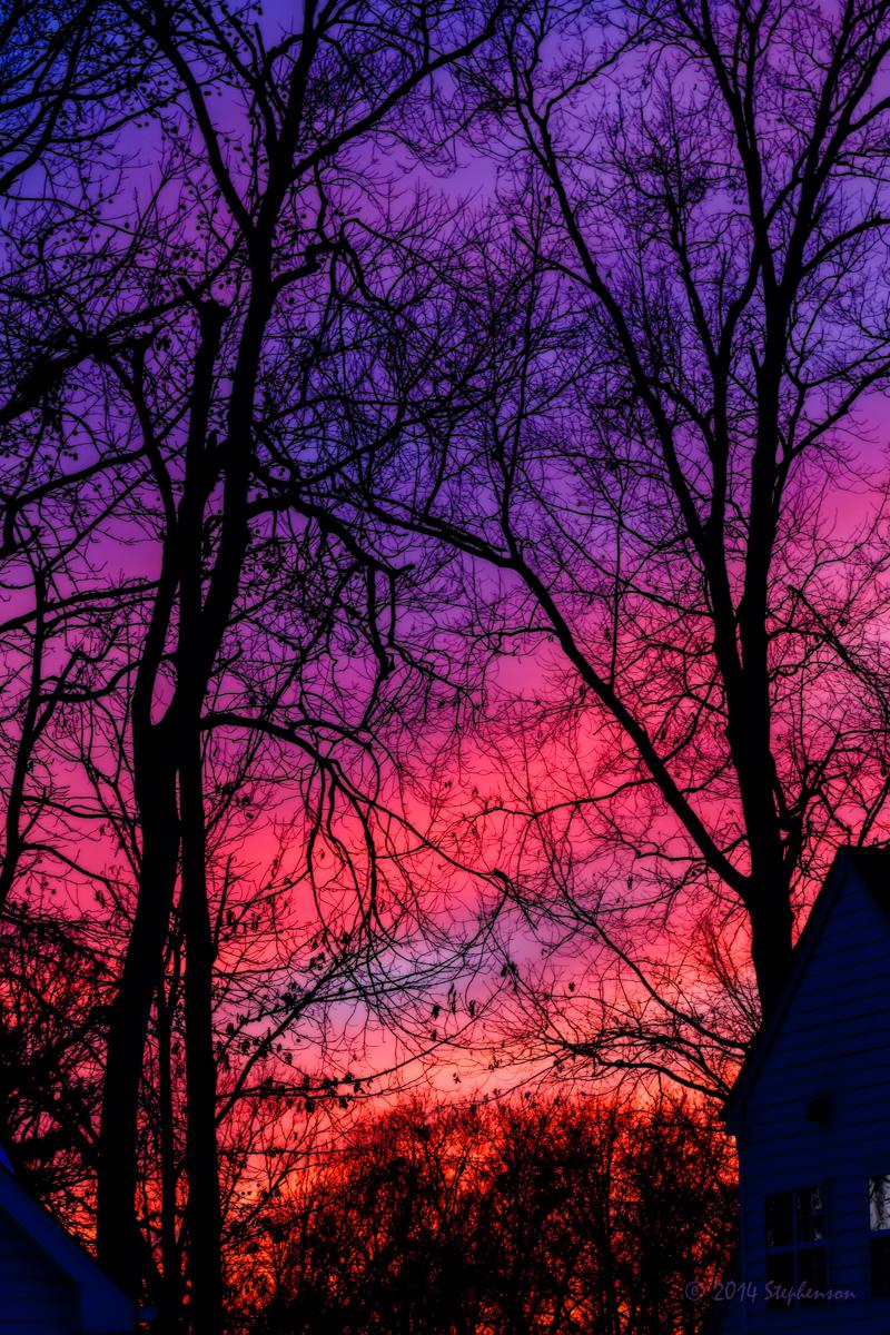 Sunset Silhouette_.jpg