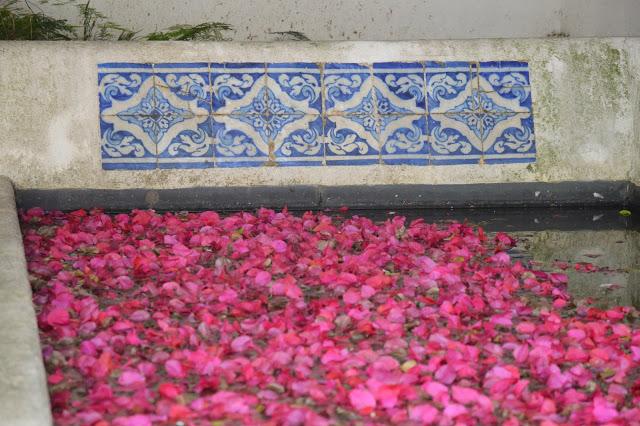 from a beautiful monastery garden.
