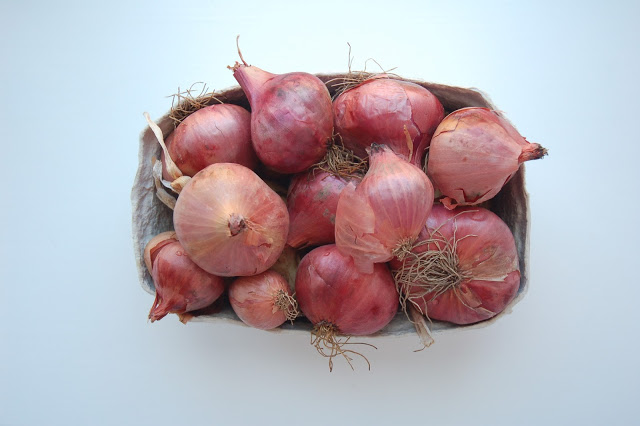 Beautiful onions from the harvest festival.