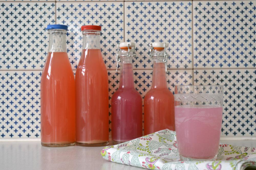 Bottled_rhubarb04.jpg