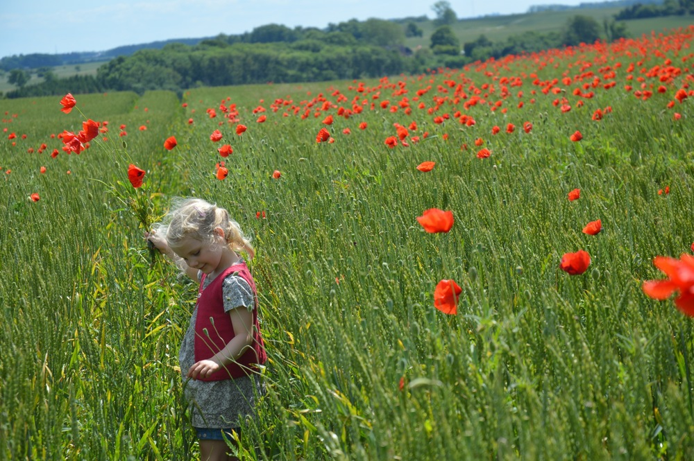 Nieva_and_Poppies_08
