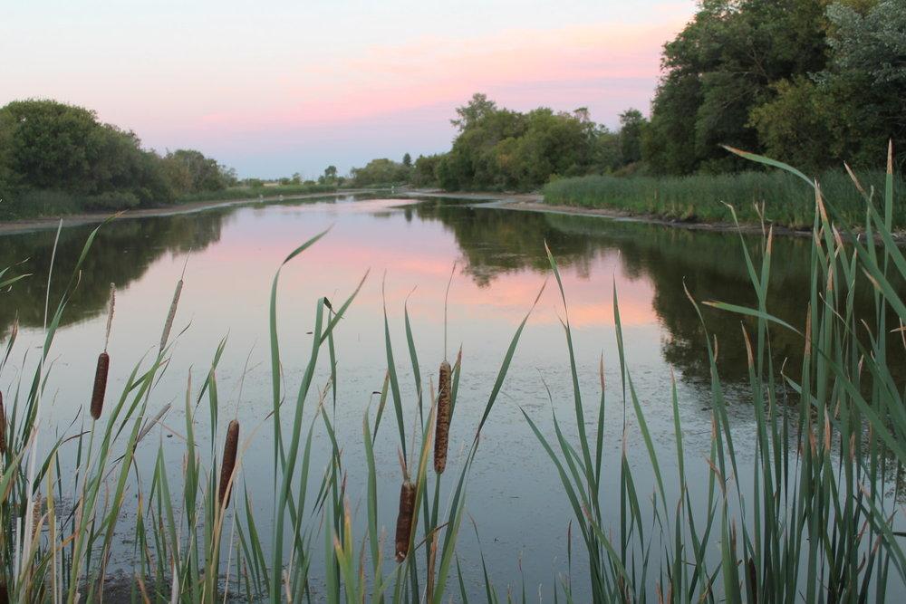 Our beautiful Oak Creek
