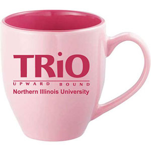 northern-illinois-university-ceramic.jpg