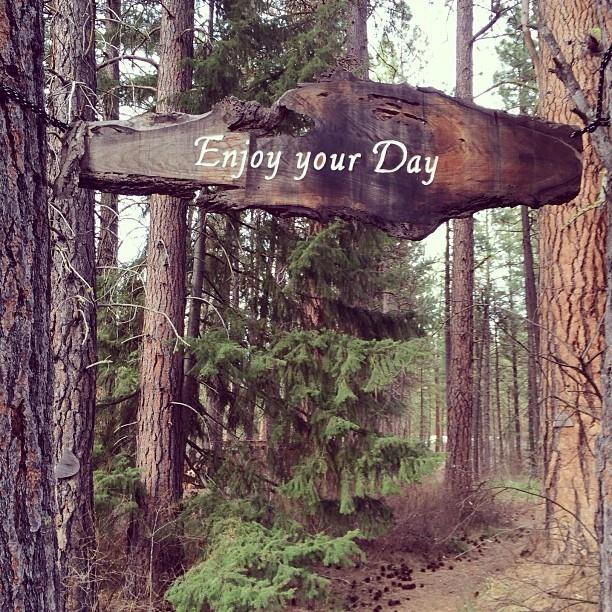 Enjoy your day.jpg
