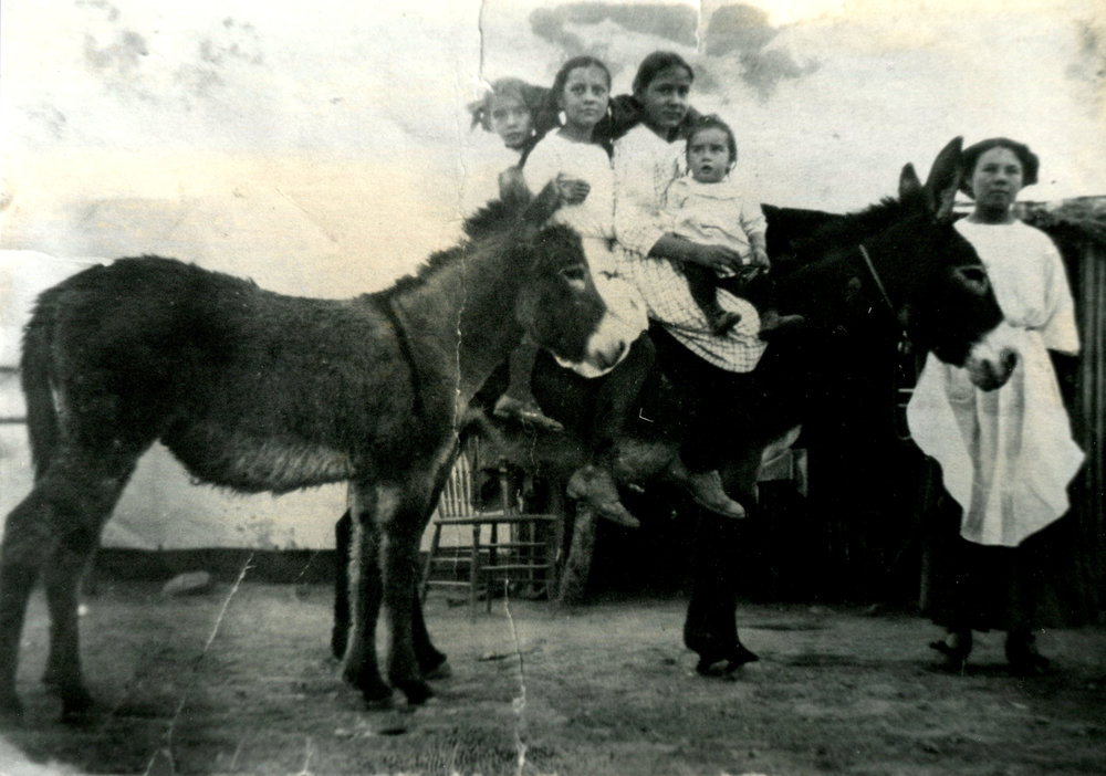 The writing on the back of this photograph reads: Andrade family at Turning Point Mine, circa 1911. From left to right, Sara Andrade Bartlet, Eva Bible, Sofia Andrade, Salvador Andrade, Lolita Andrade.  (Uncle Frank's Family) Lived in tent houses. My grandfather, Salvador Andrade is the small boy in the photograph. My aunt is Sara on the far left. Four kids on the burro, nice.