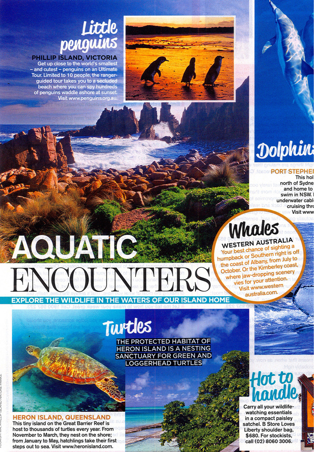 Sunday Herald Sun Sunday Magazine Phillip Island Nature Parks Feature.jpg