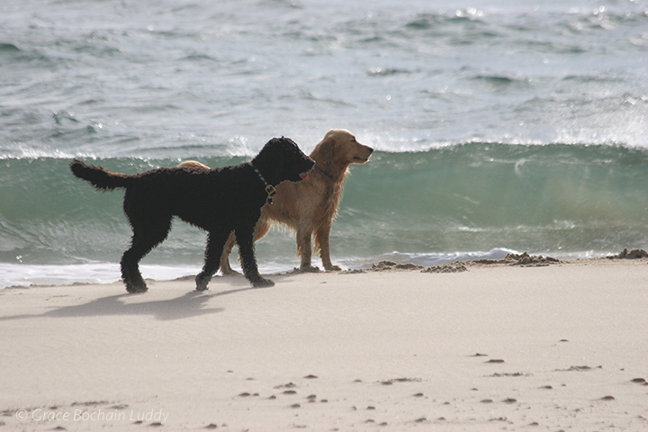 Wilson and his friend, Sondi.