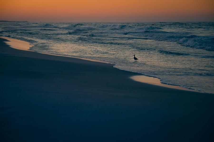sunrise-02.jpg
