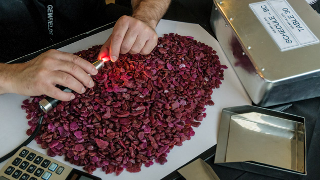 GEMFIELDS' inaugural ruby auction in June. Photo: the GIA