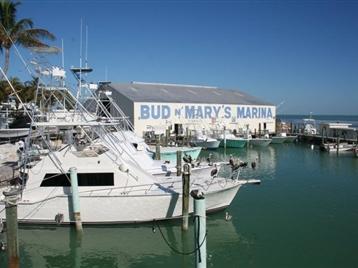 Bud n Mary's Marina - Islamorada, FL