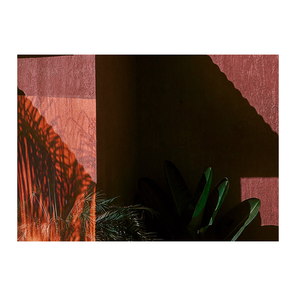 Norwalk Palms Abstract; 2017