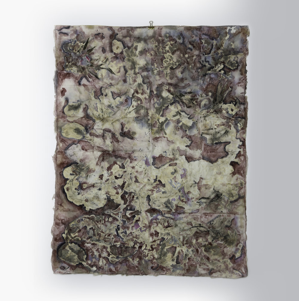 """Eco Print of Suburbia #12  Natural Dye on Handmade Paper, 30"""" x 24""""  Signed on Verso  Original"""