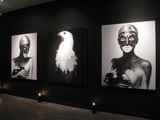The Work of Raif Adelberg @ HVW8 Art + Design Gallery